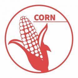 Corn-logo - 512px