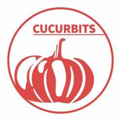 Cucurbit- logo - 512px