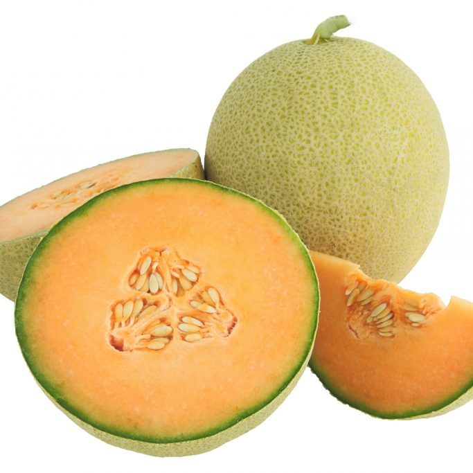 Melon carribean gold